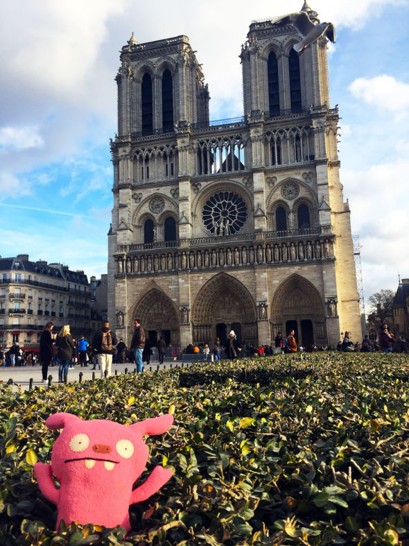Image of Puglee visiting the Cathédrale Notre-Dame de Paris.